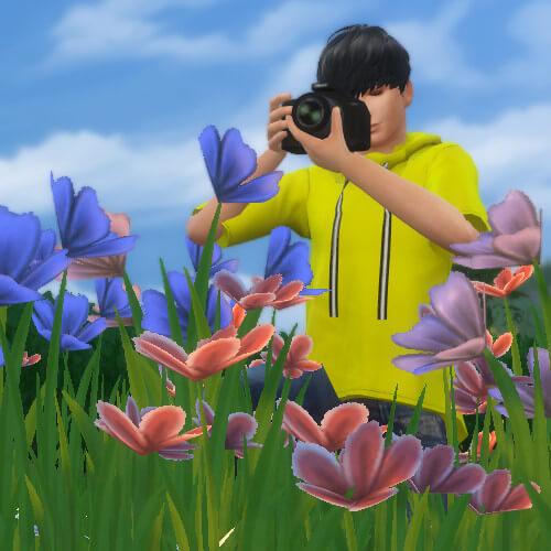【10万円でできるかな】写真コンテストにパララブチームで挑戦!